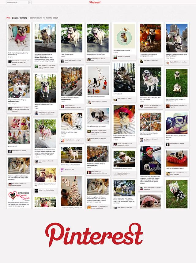 FINAL-Pinterest-Wall-Paper-1