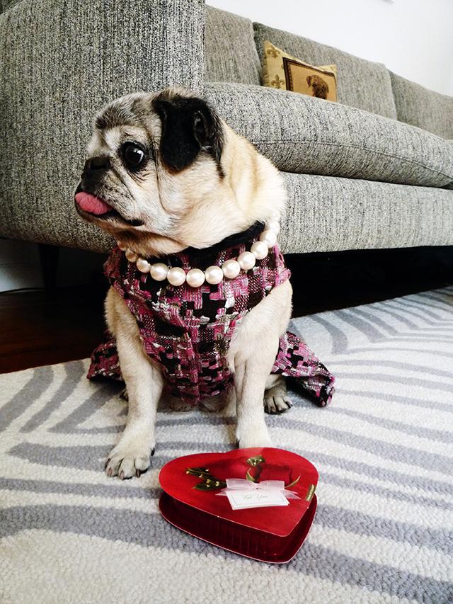 Valentines4