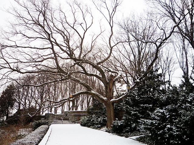 WinterPortrait17