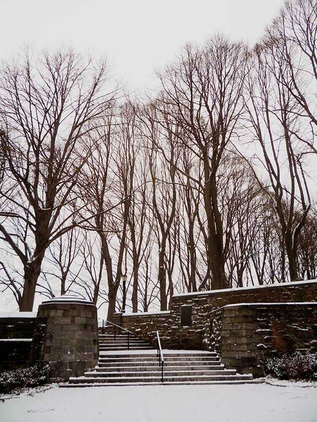 WinterPortrait19