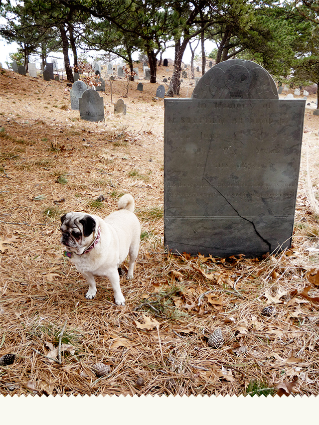 GraveyardMamma1