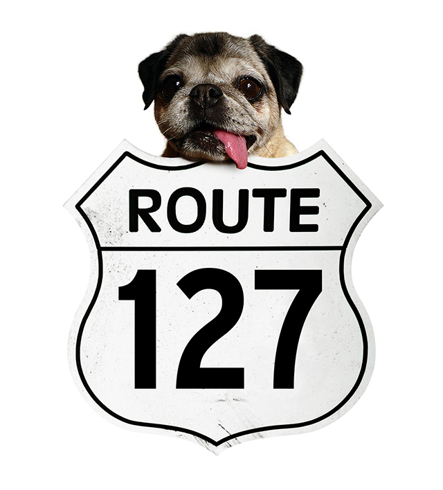 Route127YardSaleHeader