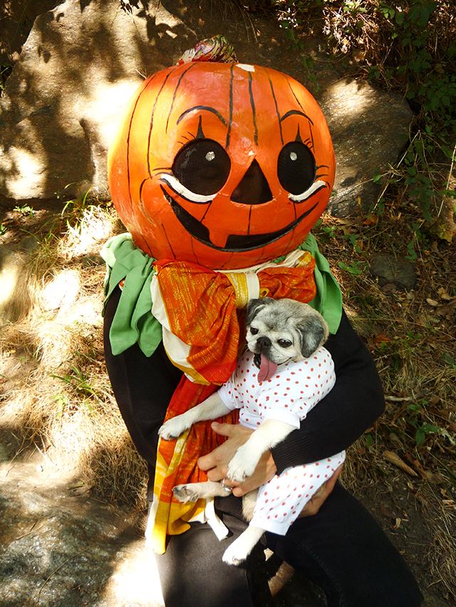 GreatPumpkin4