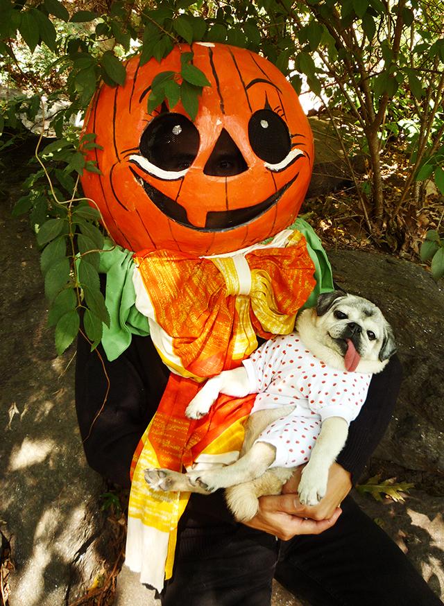 GreatPumpkin5