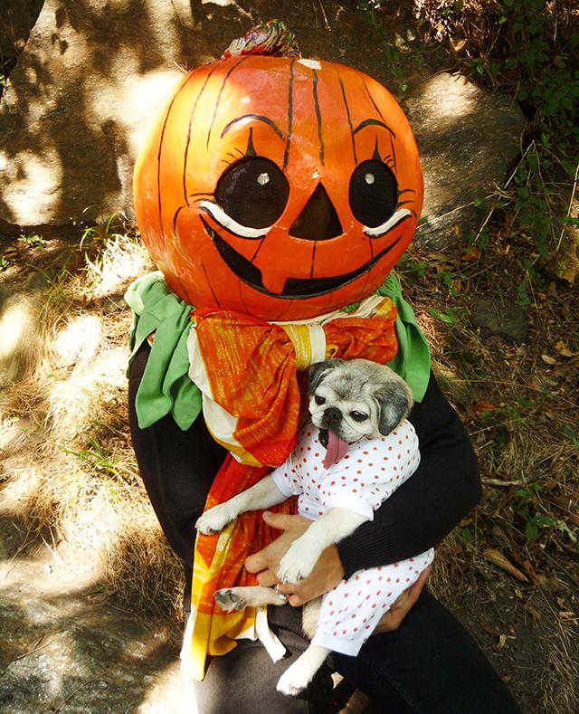 GreatPumpkin6